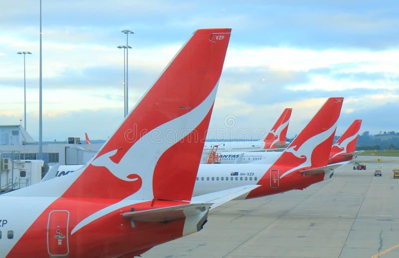Qantas flygplan royaltyfria foton