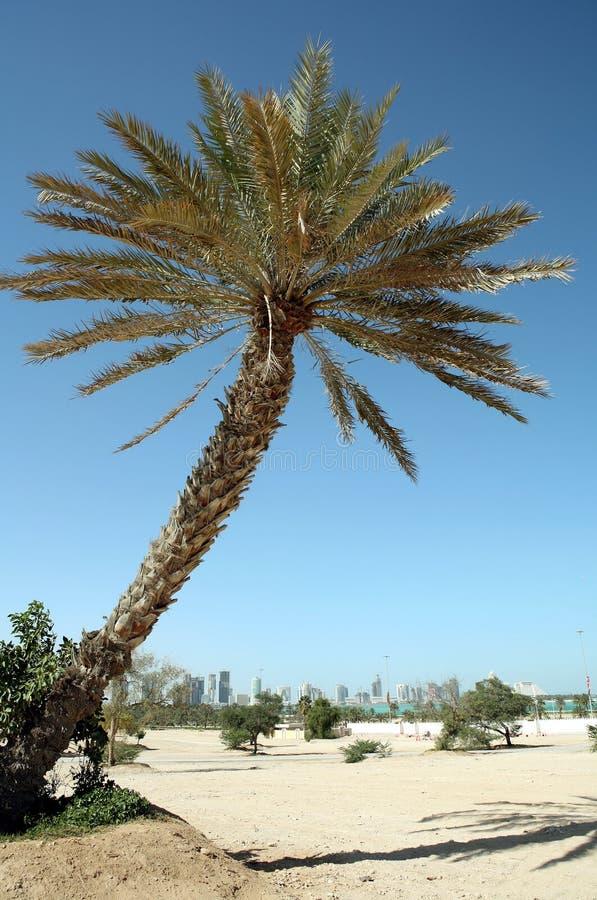 Qatar dauhańskiej zdjęcie royalty free