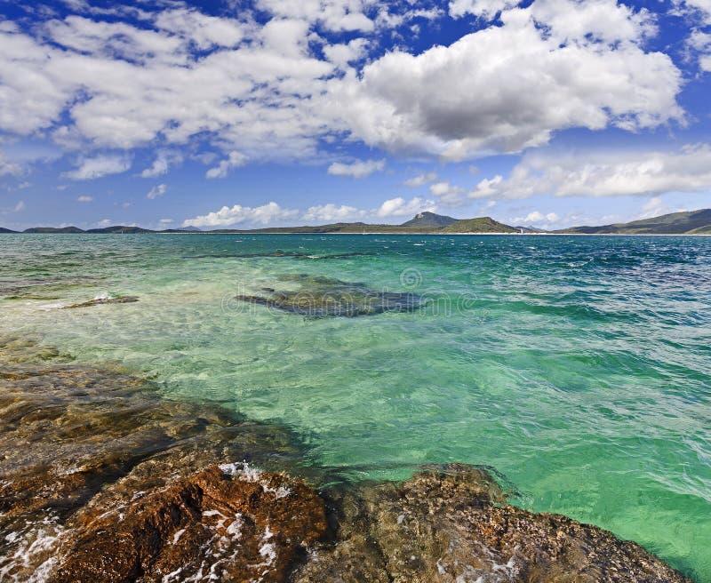 QE FI Coral Island Seabed stock foto's
