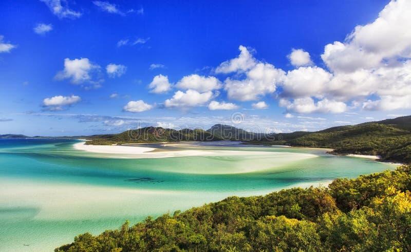 QE Whit Beach Forest CEP imagens de stock