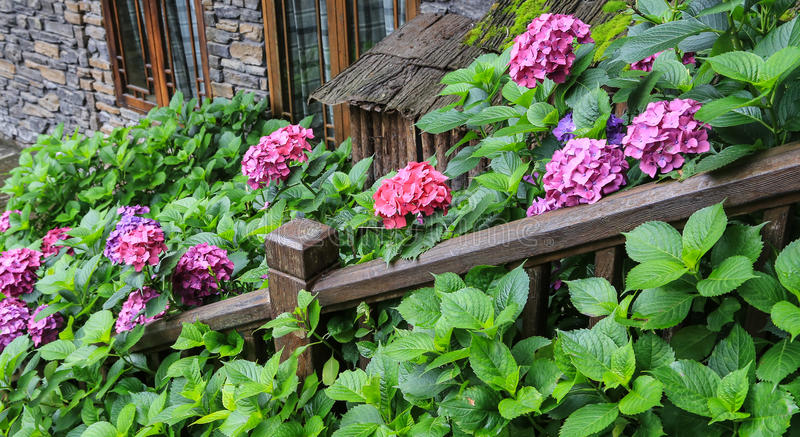 Qili-Stadt im Emei Shan, Sichuan, Porzellan lizenzfreie stockfotografie