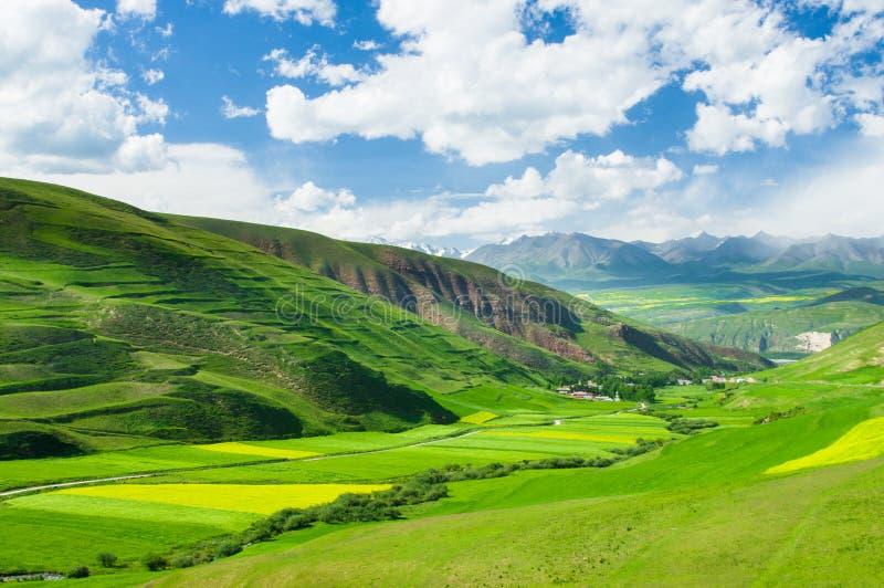 Qilian山 库存图片