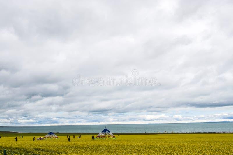 Qinghai jezioro, Qinghai Chiny fotografia stock