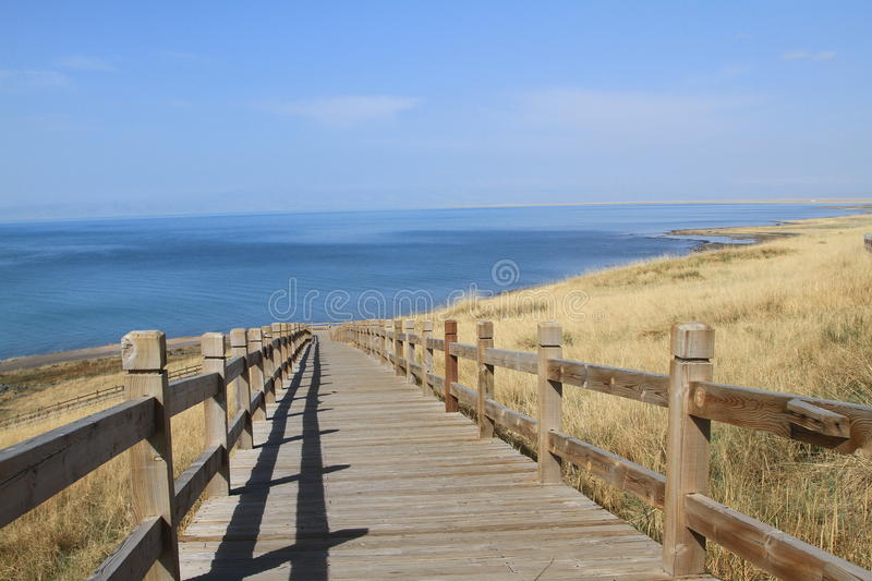 Qinghai lake. The qinghai lake in china stock photography