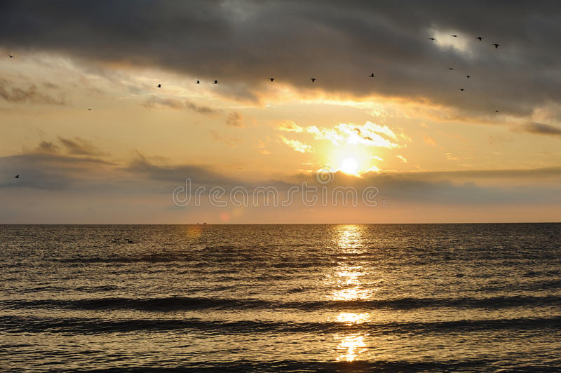 Qinghai Lake with geese. Qinghai Lake at sunrise, in Qinghai,China royalty free stock photo