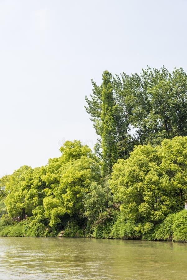 Qinghuairivier en groene boom stock afbeelding