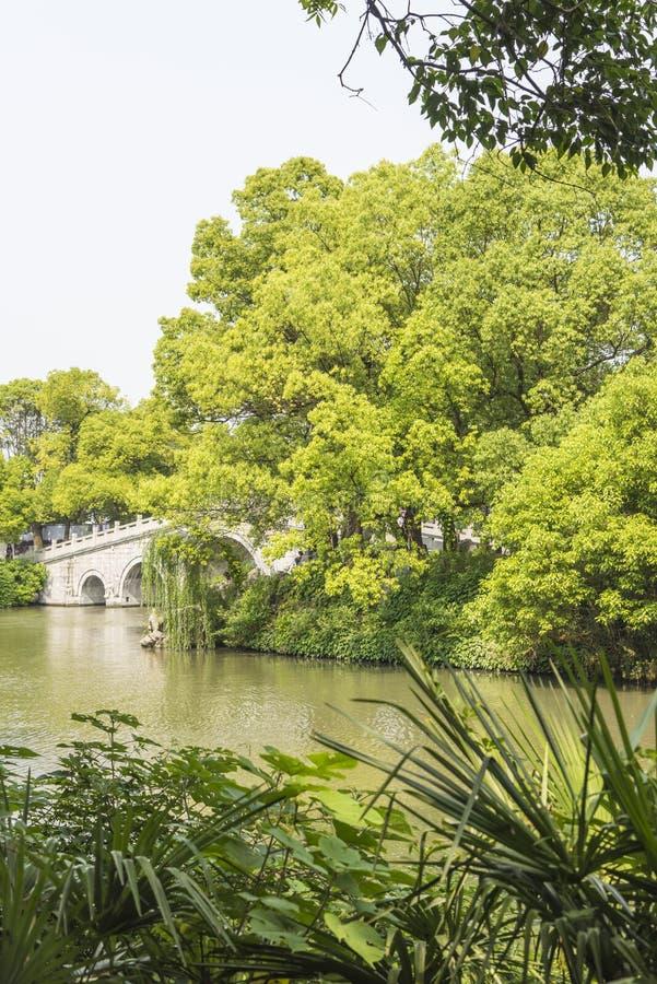 Qinghuairivier en groene boom royalty-vrije stock foto