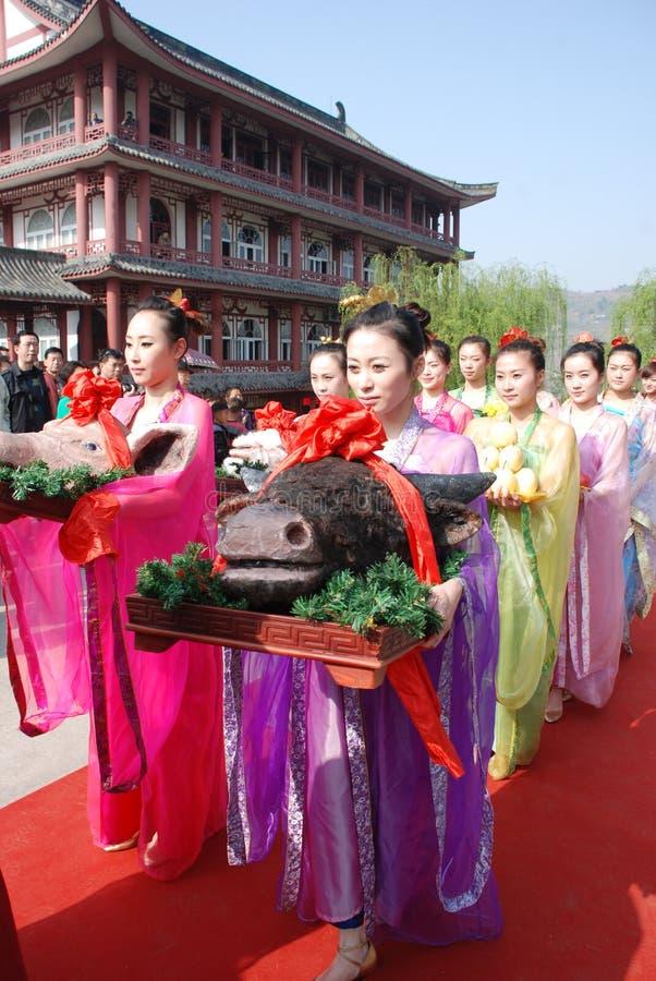 qingming för kinesisk festival för ceremoni minnes- offentlig royaltyfria bilder