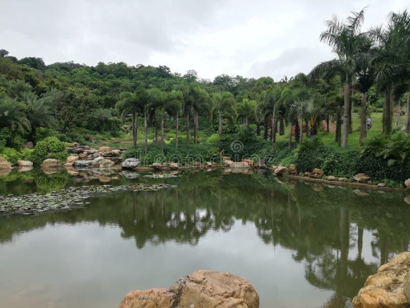 qingxiu lasu państwowego halny park z jeziorami obrazy royalty free