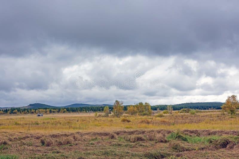 Qixinghu wetland park Autumn scenery royalty free stock photo