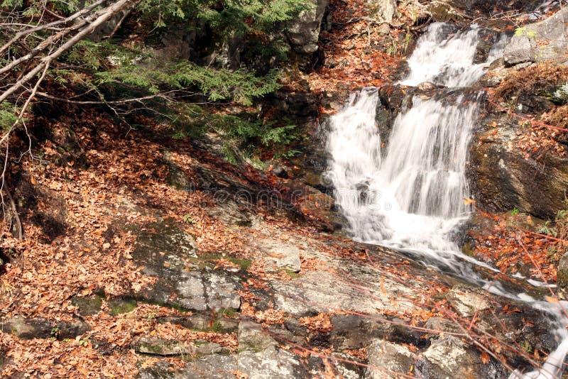 Québec dell'Au del automne dell'en della natura della La/cascata adorabile fotografia stock libera da diritti