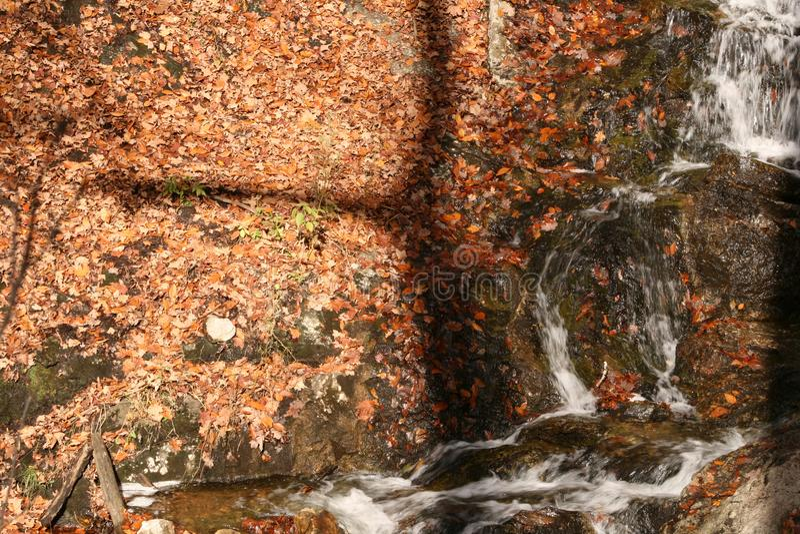Québec dell'Au del automne dell'en della natura della La/cascata adorabile fotografia stock