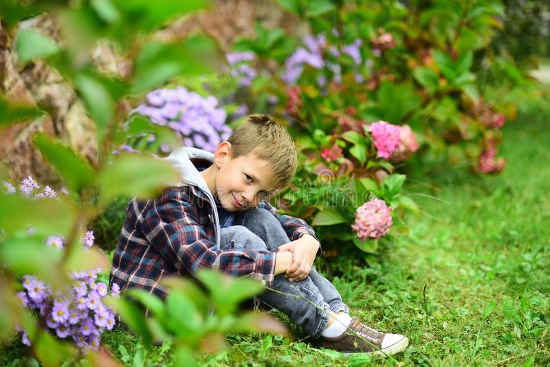 Qué a esperar El pequeño muchacho se relaja en jardín Pequeño muchacho que cuenta con algo Viva en la misma alma de la expectativ foto de archivo libre de regalías