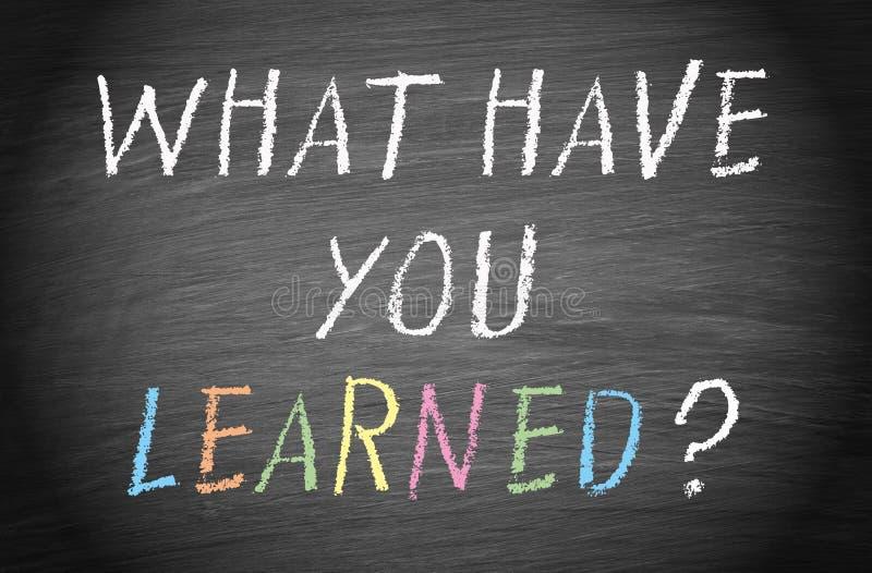 ¿Qué usted ha aprendido? ilustración del vector