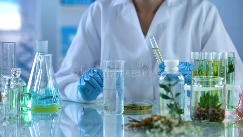 Químico que experimenta con los líquidos cosméticos, producto del cuidado del cuerpo, cosmetología foto de archivo