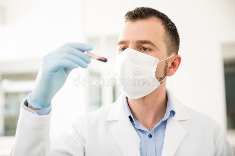 Químico que olha uma amostra de sangue imagem de stock