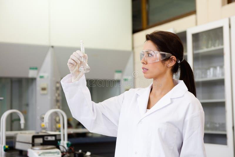 Químico que olha uma garrafa de Erlenmeyer fotos de stock