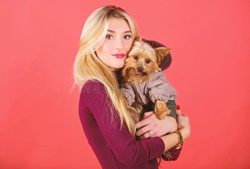 Qu? razas del perro deben llevar las capas Perro del abrazo de la muchacha peque?o en capa La mujer lleva el terrier de Yorkshire fotos de archivo