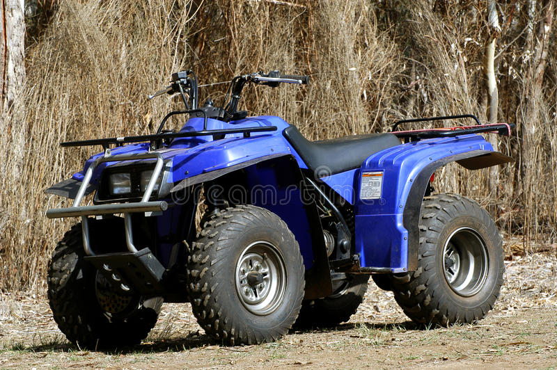 Download In quad in the bush stock photo. Image of quadbike, australian - 29045342