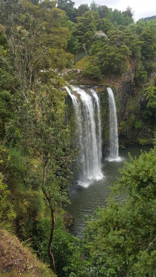 Quad la cascada en un agujero de natación ocultado por los árboles imagen de archivo