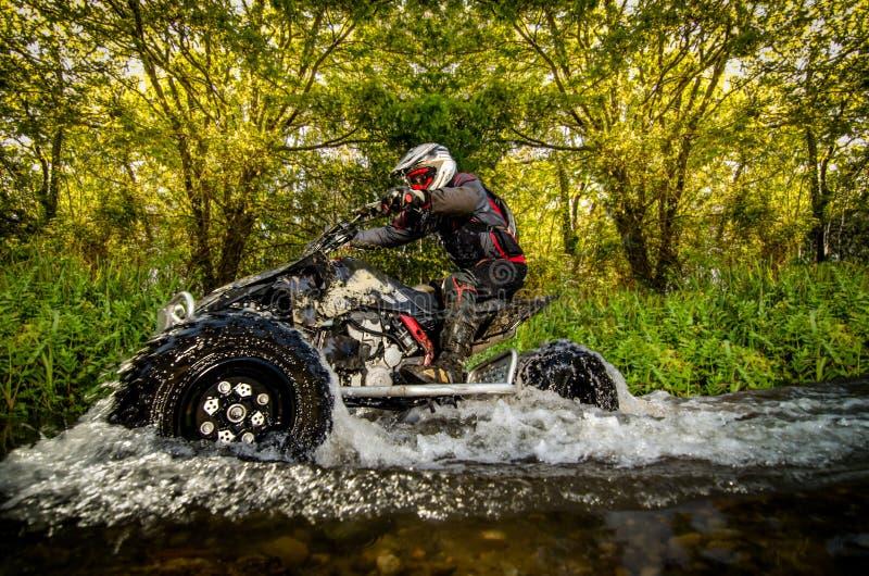 Quad rider through water stream stock image