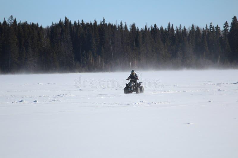 Quading a través de Windy Lake In Winter fotos de archivo libres de regalías