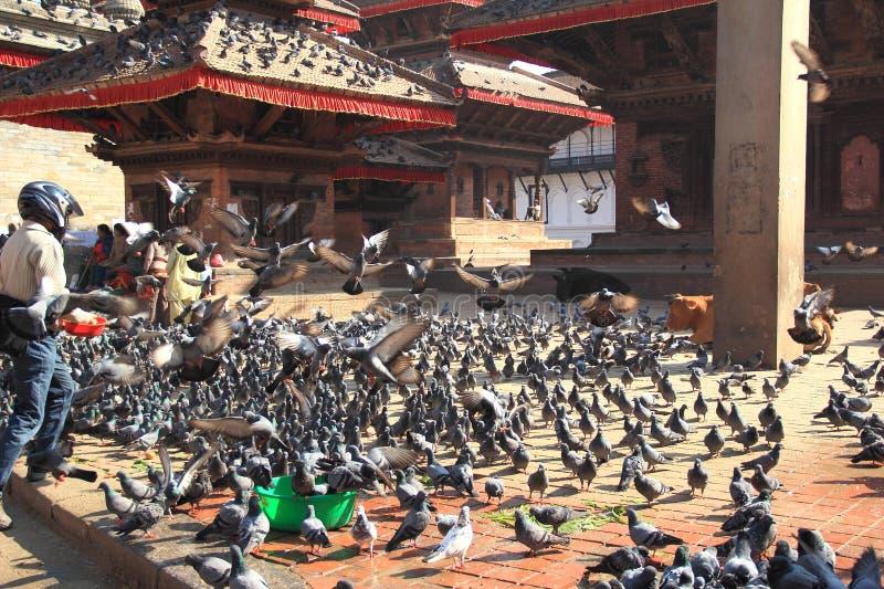 Quadrado de Durbar em Bhaktapur. fotografia de stock