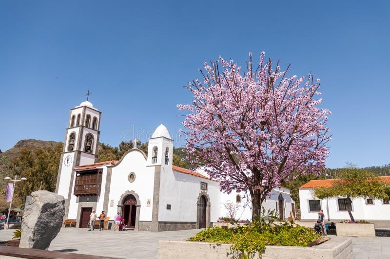 Quadrado principal da cidade Santiago del Teide e da árvore de amêndoa foto de stock