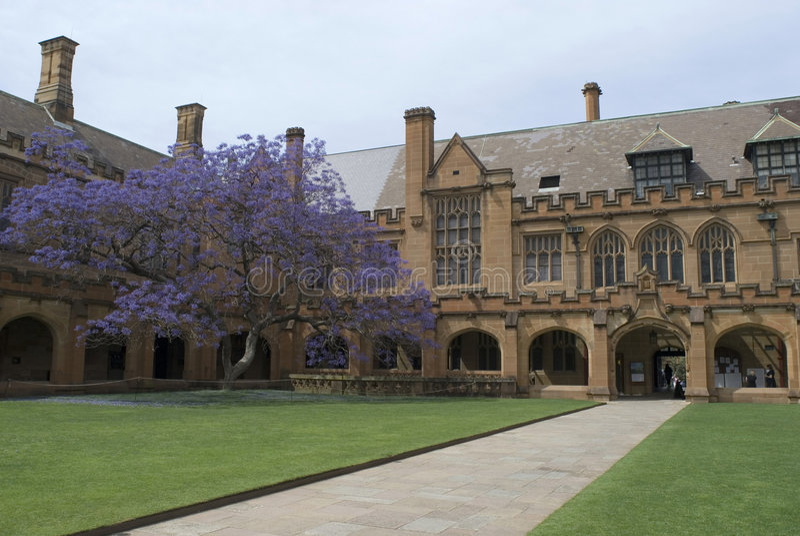 quadranglesydney universitetar royaltyfri fotografi