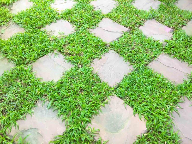 Quadrat des grünen Grases mit Stein lizenzfreie stockfotos