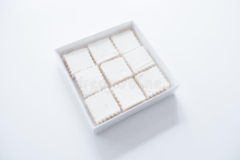 Quadratische Eibische in einem Kasten stockbild