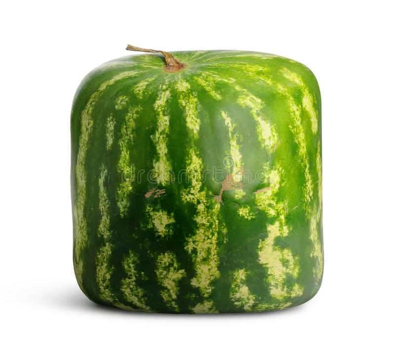 Quadratische Wassermelone lizenzfreie stockbilder