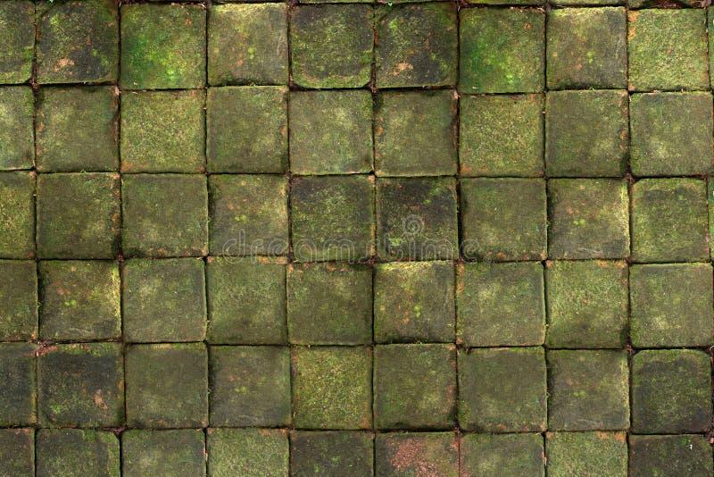 Quadratischer Ziegelstein mit dem Moos auf die Oberseite stockfotografie