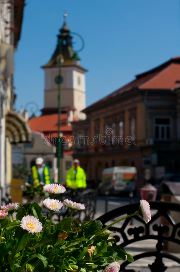 Download Quadrato del Consiglio fotografia stock. Immagine di mattina - 30830414