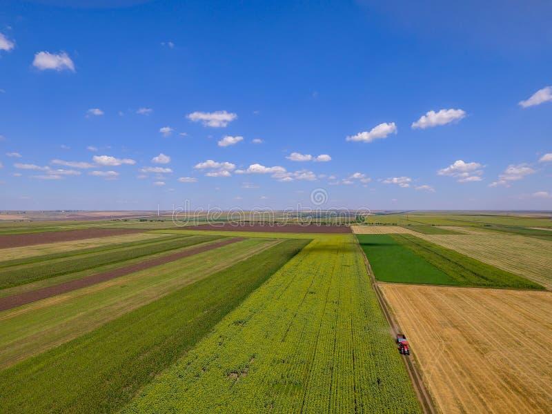 Quadrato della foto del fuco in un campo di estate nella stagione agricola immagini stock libere da diritti