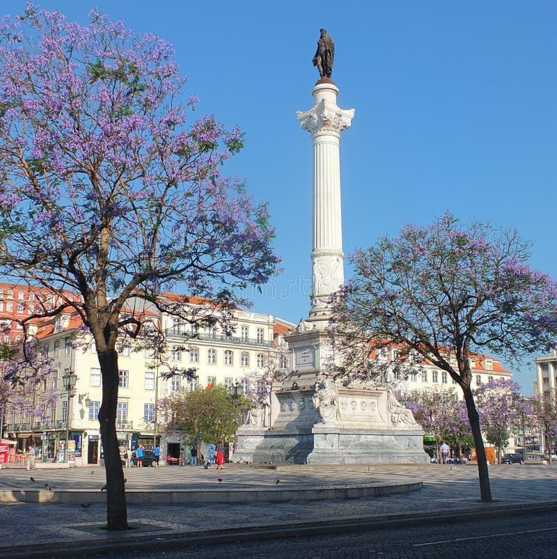 Download Quadrato di Dom Pedro IV fotografia stock. Immagine di pedro - 55365206