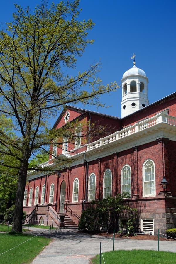 Quadrato di Harvard, Cambridge fotografia stock