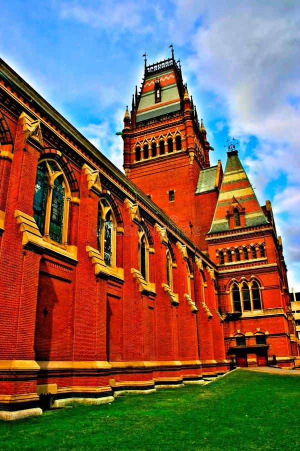 Quadrato di Harvard, S.U.A. immagine stock libera da diritti