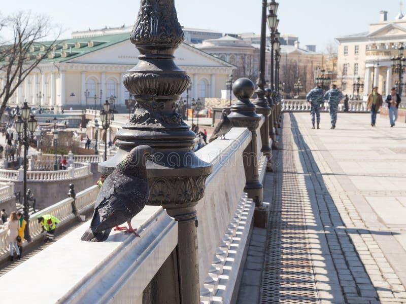 Quadrato di Manezhnaya in primavera, Mosca fotografia stock