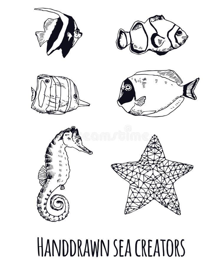 Quadriculação tirada mão dos animais de mar ilustração do vetor