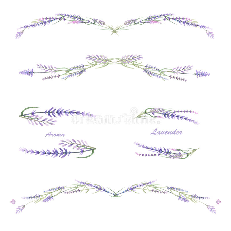 Quadro a beira, ornamento decorativo floral com alfazema da aquarela ilustração stock