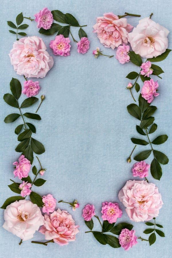 Quadro bonito, romântico, floral com pálido - rosas cor-de-rosa no azul, tela imagem de stock