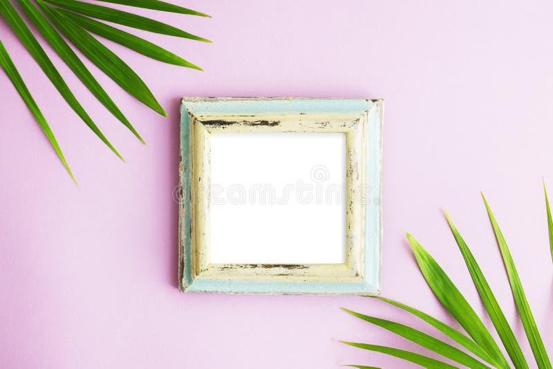 Quadro colocado plano da foto da vista superior com duas folhas de palmeira verdes no fundo cor-de-rosa brilhante Zombaria tropic fotografia de stock royalty free