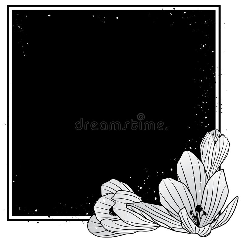 Quadro com as flores do açafrão ilustração stock