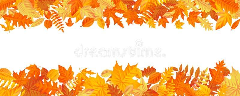 Quadro com as folhas coloridas do outono da queda no fundo branco Eps 10 ilustração royalty free