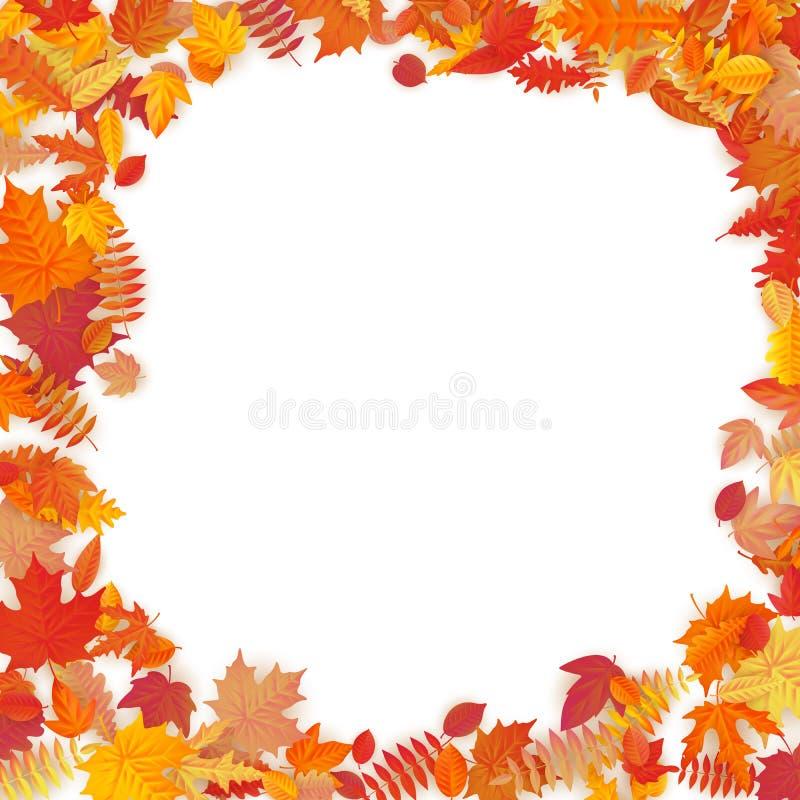 Quadro com as folhas de outono de queda vermelhas, alaranjadas, marrons e amarelas Eps 10 ilustração do vetor