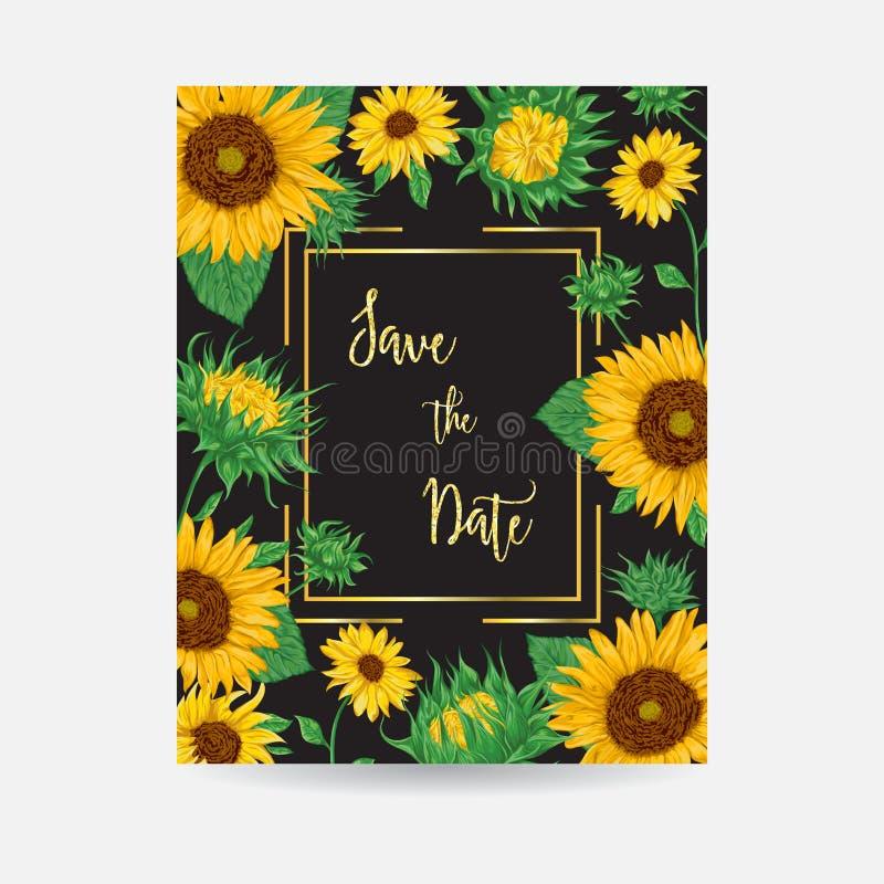 Quadro com cartão de sunflowers Elementos decorativos do design floral da coleção ilustração do vetor