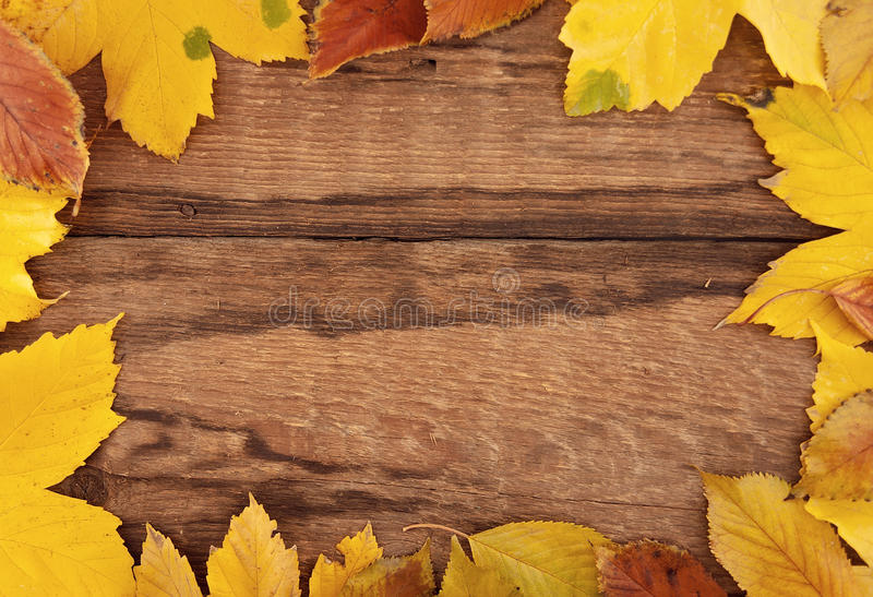 Quadro composto das folhas de outono coloridas no backgr rústico de madeira fotos de stock