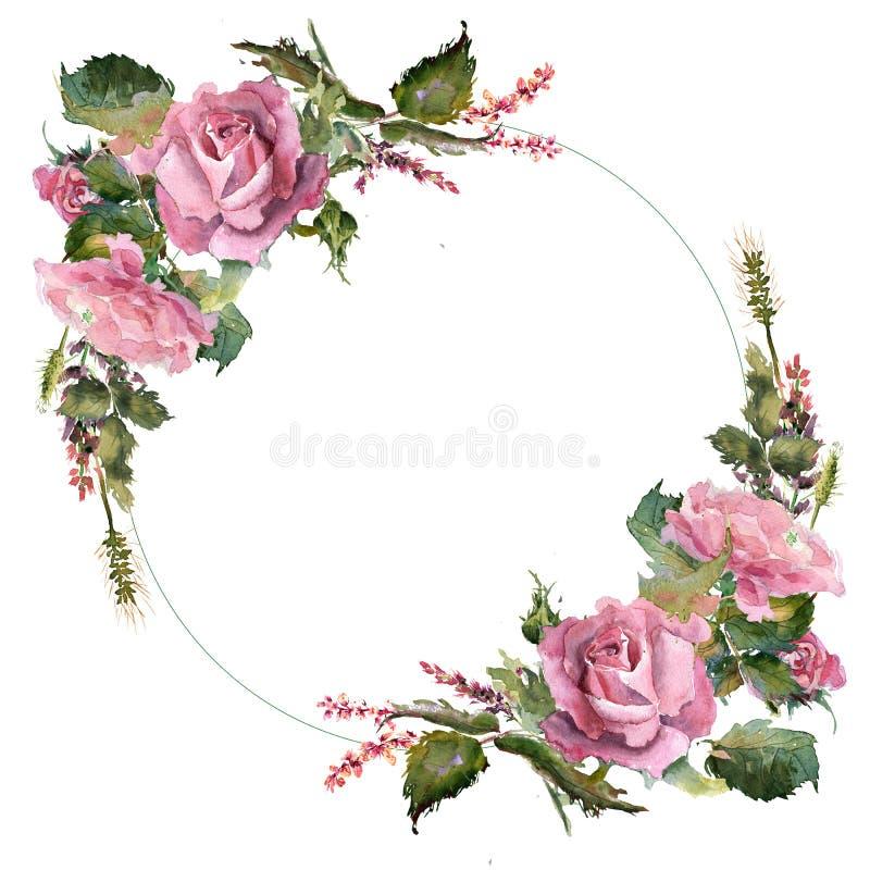 Quadro cor-de-rosa da grinalda das flores da aquarela romântica ilustração royalty free