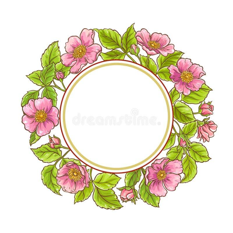 Quadro cor-de-rosa selvagem do vetor ilustração do vetor